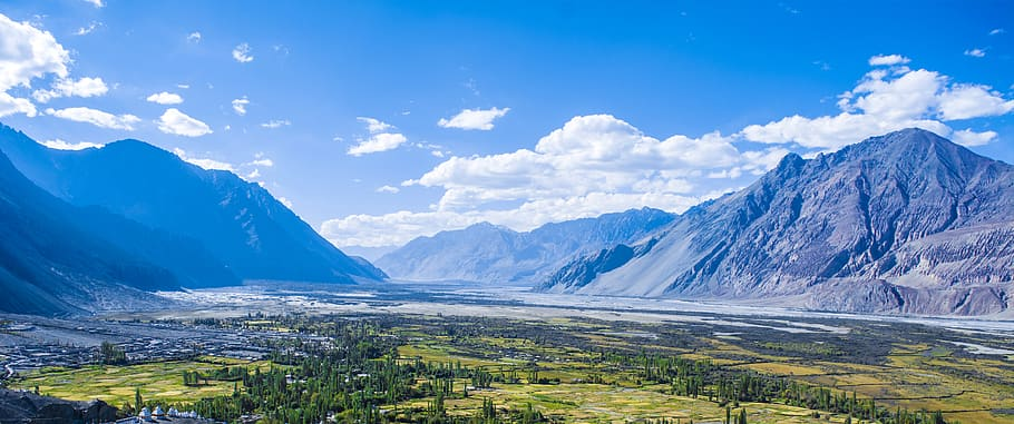 india-ladakh-leh-ladakh-northern-range-trek-n-tour-trees.jpg