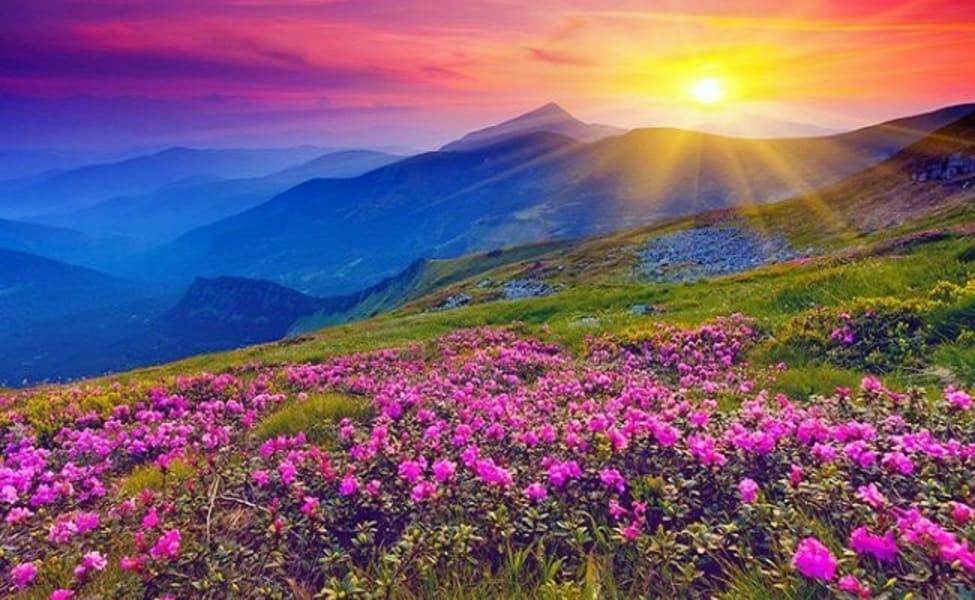 Valley-of-flowers-trekkers-of-india.jpg